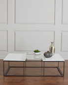 Emmeline Metal and Acrylic Coffee Table