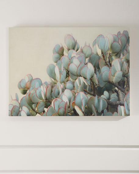 """Four Hands """"Succulent 2"""" Photograph Print on Maple Box Art"""