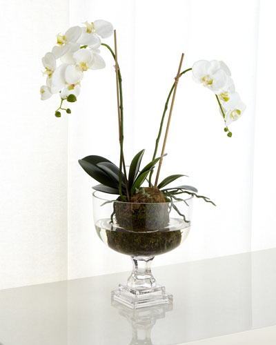 Nature's Beauty Orchid Faux-Floral Arrangement