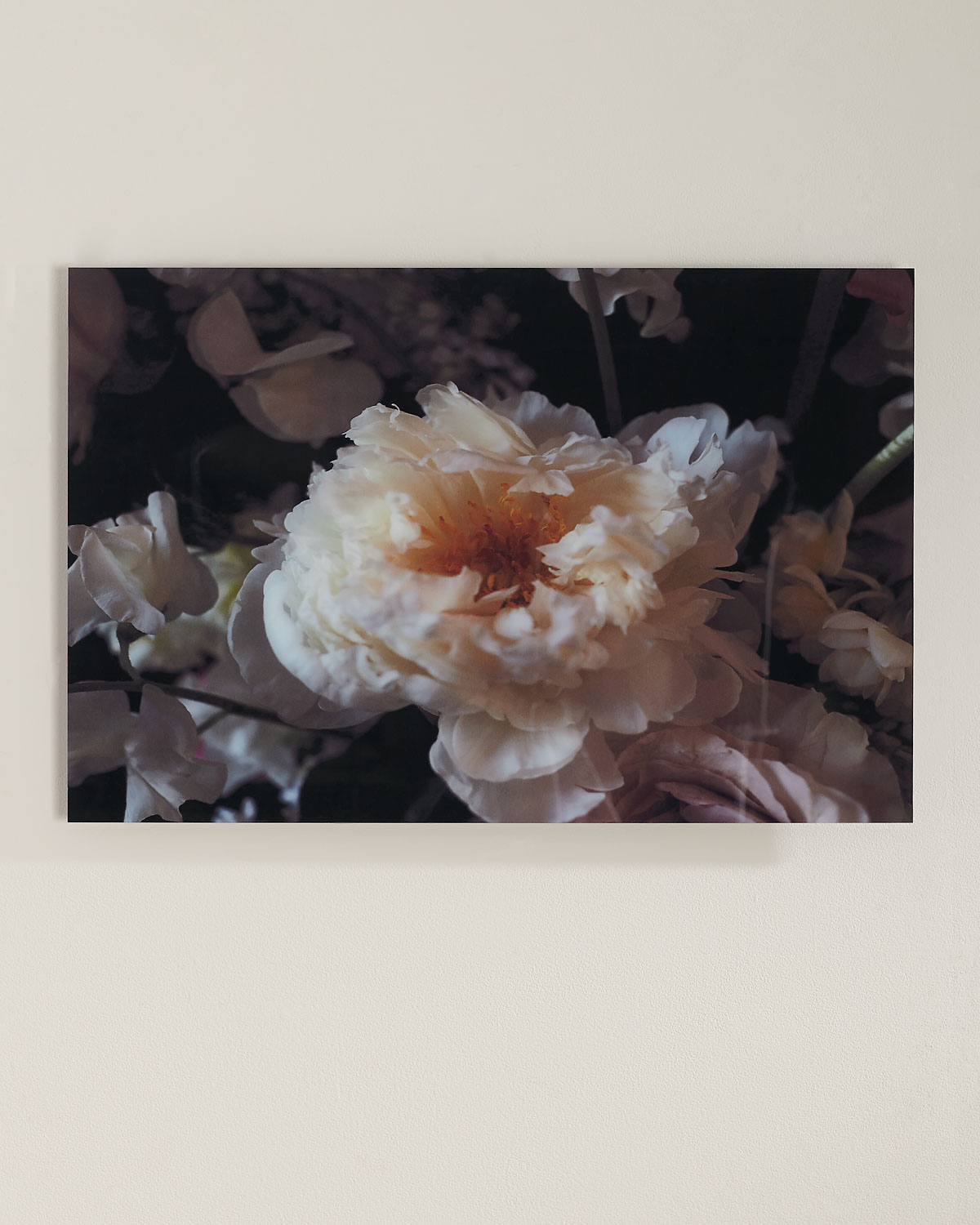 """Handcrafted soft focus digital photography print on Plexiglass and wood. 3-point security hardware included. 32""""W x 1.5""""D x 21""""T. Made in the USA. Boxed weight, approximately 26 lbs."""