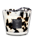 Baobab Collection Max Black Pearls Scented Candle, 3.9