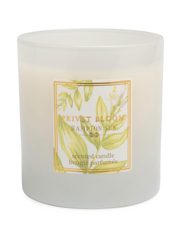7.5 oz. Privet Bloom Scented Candle