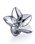 Baccarat Bloom Crystal Flower Decor, Silver