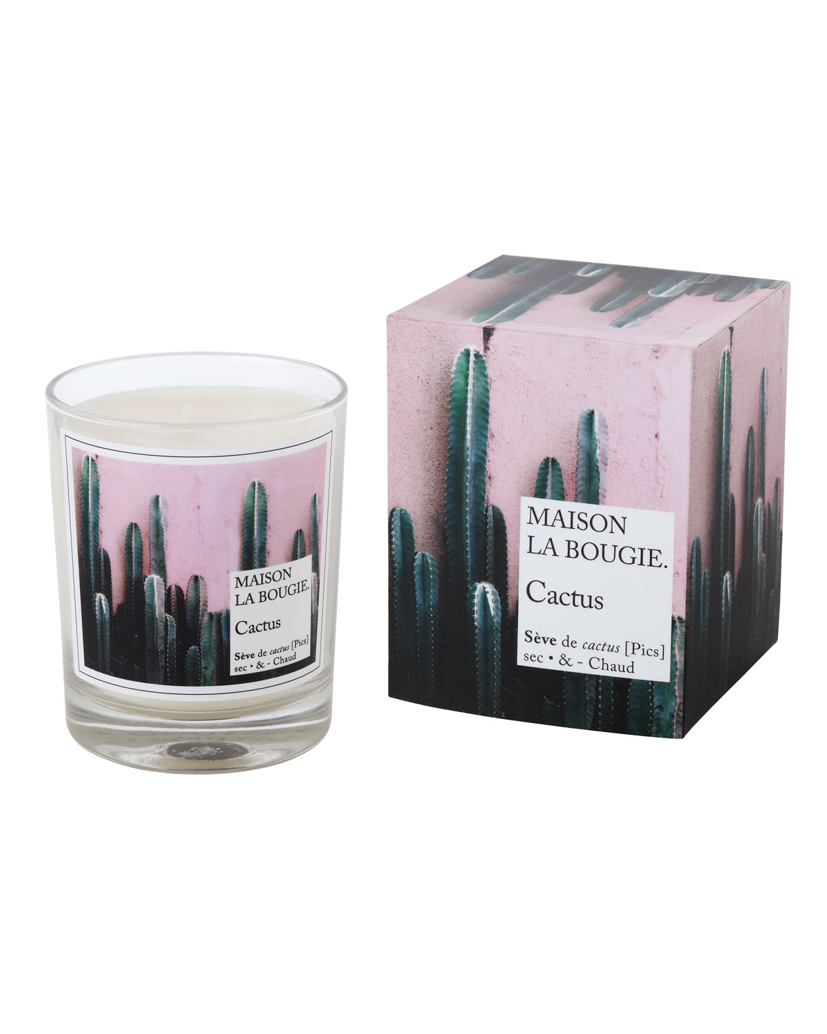 6.7 oz. Cactus Scented Candle