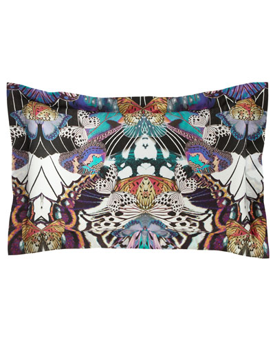 Flying Wings King Shams, Set of 2