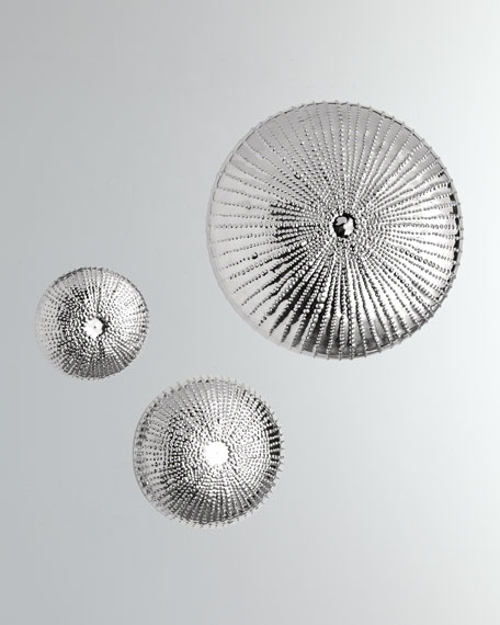 Global Views Medium Sea Urchin Wall Sculpture