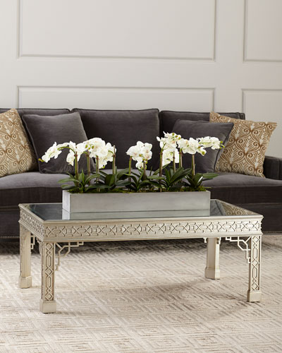 Pavillion Antiqued Mirrored Coffee Table