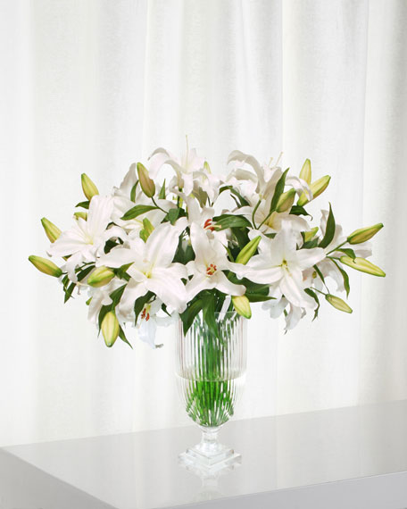Winward Lily Casablanca in Stripe Cut Vase