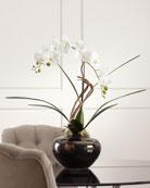 John-Richard Collection Artistic Orchid Arrangement
