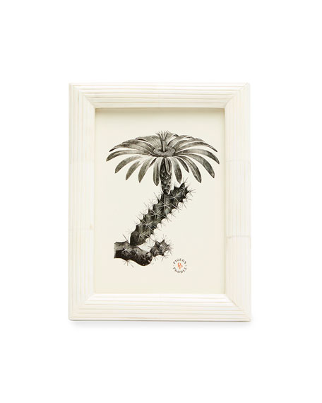 """Pigeon and Poodle Vannes Picture Frame, 5"""" x 7"""""""