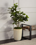 John-Richard Collection Faux Fiddle Leaf Fig