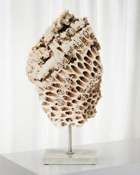 Palecek Keller Large Fossilized Coral Decor