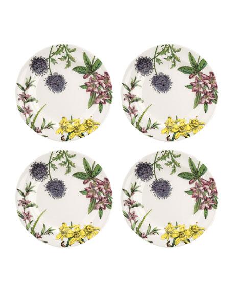 Spode Stafford Blooms Salad Plates, Set of 4