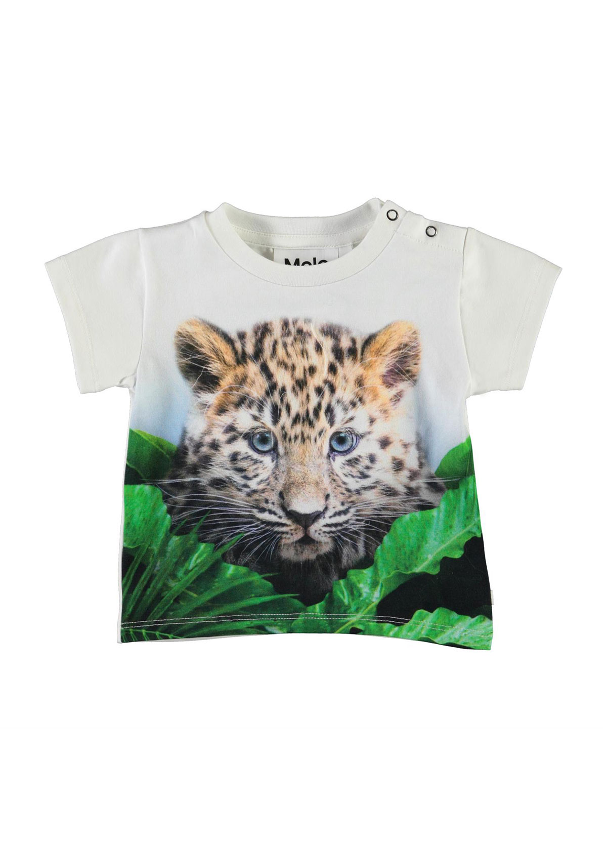 Boy's Emilio Tiger-Print Short-Sleeve Shirt