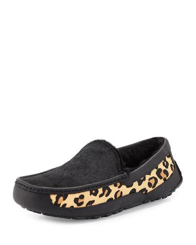 Ascot Calf-Hair Leopard Printed Slipper, Black