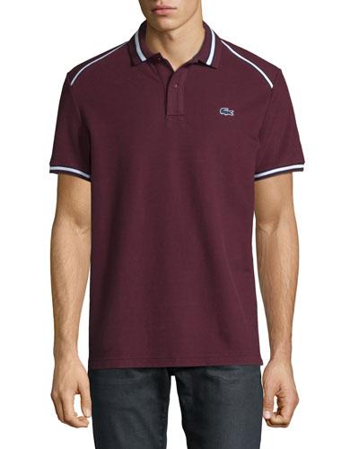 Striped-Trim Polo Shirt, Vendange/Navy Blue