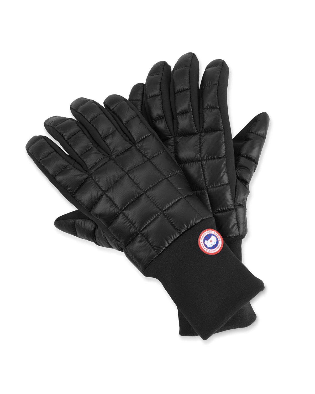 Northern Glove Liner