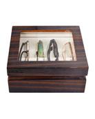 Oyobox Mini Wooden Eyewear Organizer Case