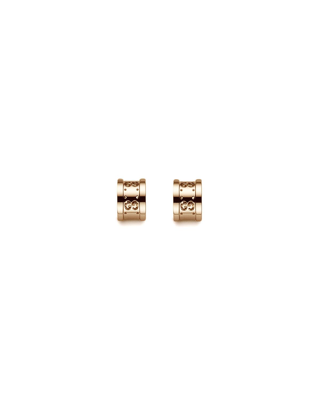 Icon Twirl Post Earrings
