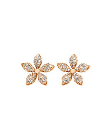 BeeGoddess Apple Seed Diamond Stud Earrings