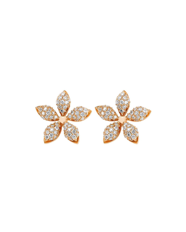 Apple Seed Diamond Stud Earrings
