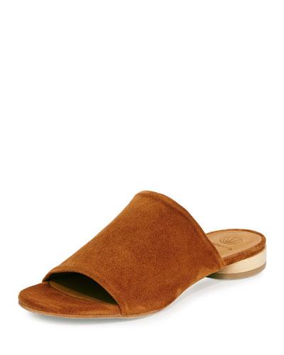 Clidro Suede Slide Sandal, Brown