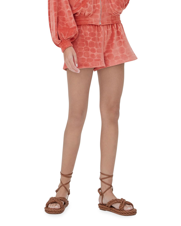 Matin Animal-Pattern Velour Shorts