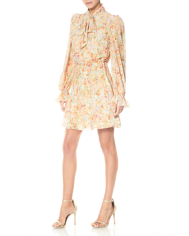 Tie-Neck Floral-Print Chiffon Mini Dress