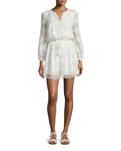 Bittern Embroidered-Lace Dress