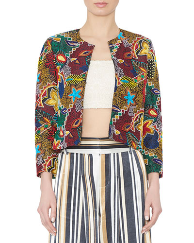 Lainey Cropped Embroidered Jacket, Multicolor