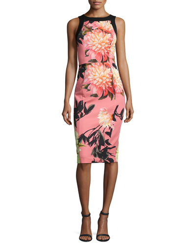 Sleeveless Floral Stretch Sheath Dress, Coral Chrysanthemum