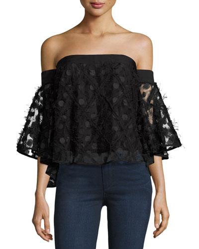 Semisheer Embroidered Off-the-Shoulder Top, Black