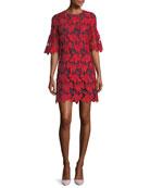 Nicola Half-Sleeve Lace Shift Dress