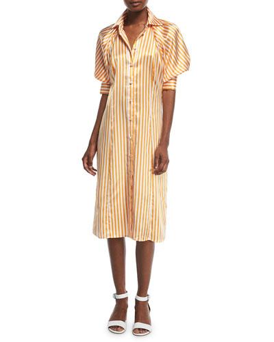 Toni's Striped Silk Shirtdress