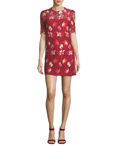 Aerie Floral Lace Short-Sleeve Mini Dress