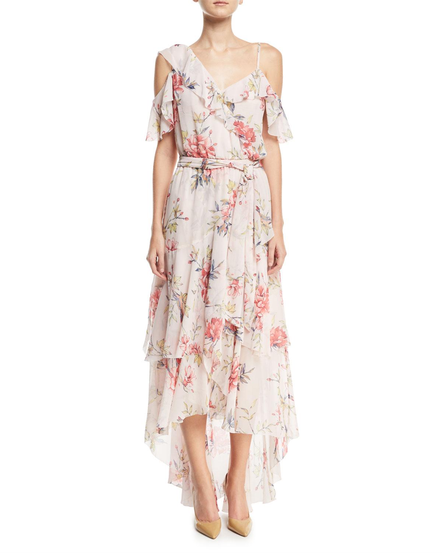 Cristeta Floral-Print Sleeveless Silk Chiffon Dress