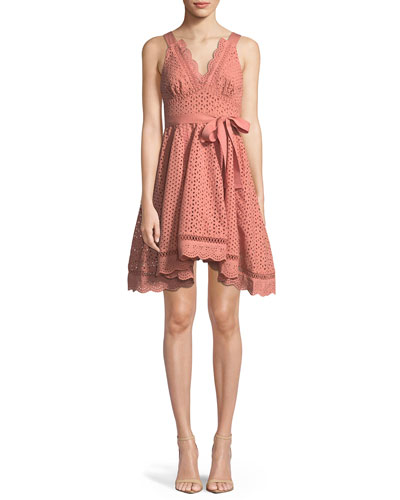 Rapture Sleeveless V-Neck Fit-and-Flare Eyelet Lace Dress