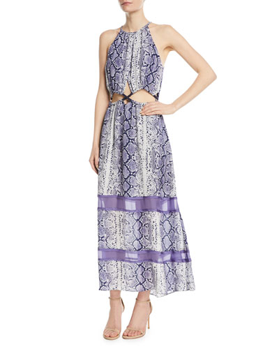 Norina Sleeveless Snake-Print Silk Maxi Dress