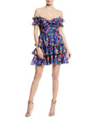 Helena Off-the-Shoulder Floral-Print Ruffled Lace Dress