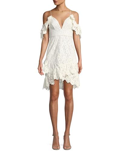 Dana Painted Lace Cold-Shoulder Mini Dress