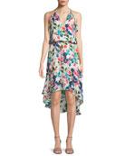 Allister Floral-Print Silk Dress