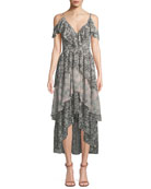 Idalia Floral-Print Ruffle High-Low Dress
