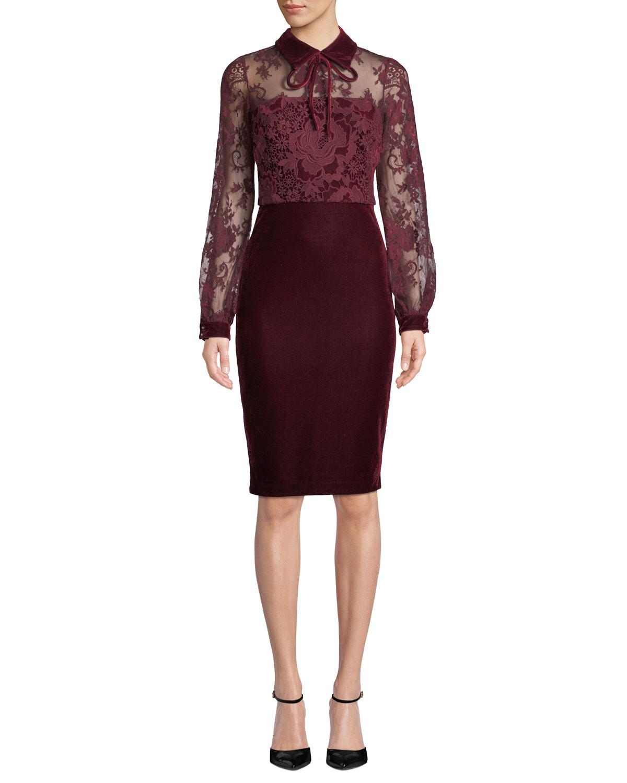 Sheer Long-Sleeve & Velvet Dress