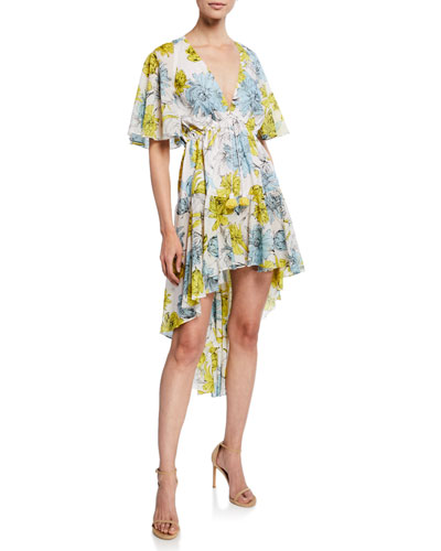f0f88aecae63 Quick Look. Alexis · Idella Floral-Print V-Neck Short-Sleeve High-Low Dress