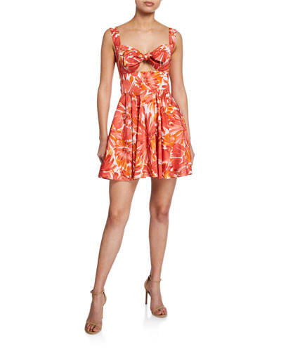 32bd7919343 Quick Look. Alexis · Ilda Floral-Print Sweetheart Fit- -Flare Dress