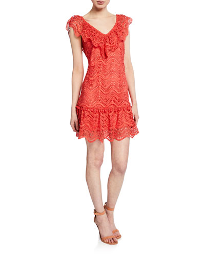 Fern V-Neck Sleeveless Mini Lace Dress