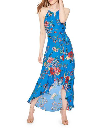 Davina Floral-Print Halter Maxi Dress