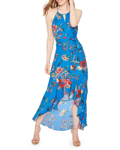 4de93f6f8451 Quick Look. Parker · Davina Floral-Print Halter Maxi Dress. Available in  Blue