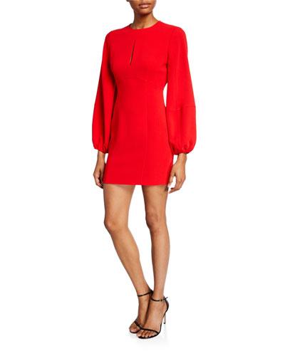 Danica Balloon-Sleeve Mini Dress