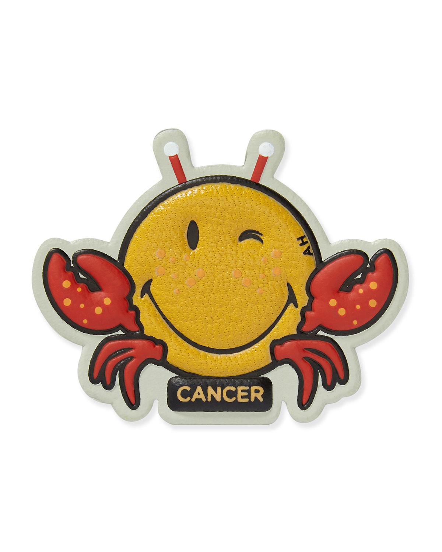 Zodiac Cancer Sticker for Handbag